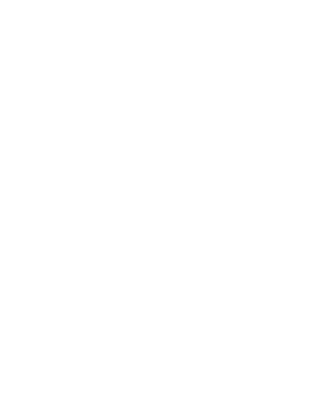 Cygnet Institute